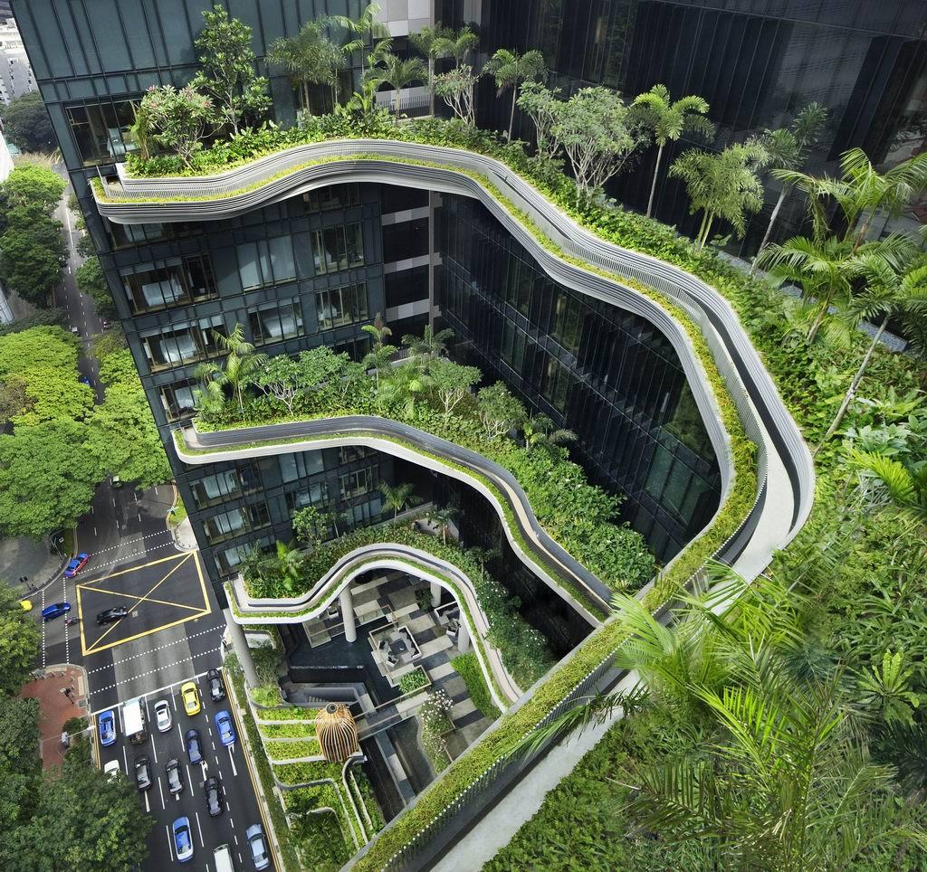 zöld ház 1