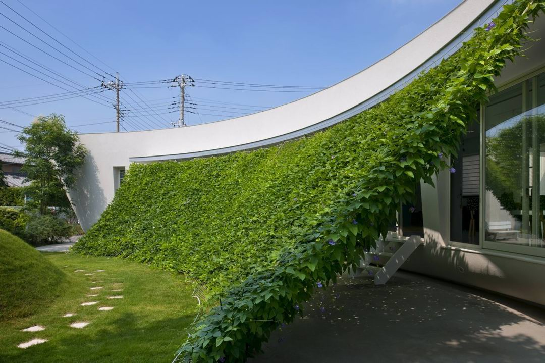green-screen-house-hideo-kumaki-architect-office_y-okamura_out-02